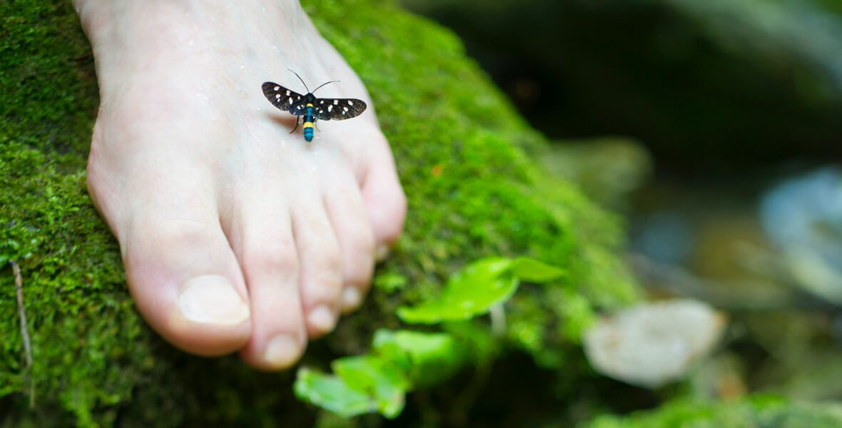 massage pied thaï